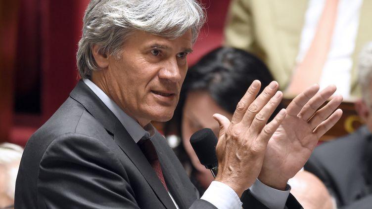 Le ministre de l'Agriculture, Stéphane Le Foll, le 18 juin 2014 à Paris. (ERIC FEFERBERG / AFP)