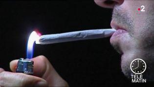 Les saisies de drogue sont en forte augmentation en France. Phénomène tout aussi inquiétant : les substances sont de plus en plus fortes. (FRANCE 2)