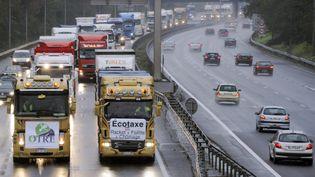 Des transporteurs routiers manifestent contre l'écotaxe, le 30 novembre 2013, à Toulouse (Haute-Garonne). (PASCAL PAVANI / AFP)