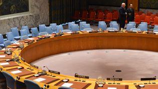 L'ambassadeur russe aux Nations unies Vassily Nebenzia (à gauche) et son homologue chinois Ma Zhaoxu au Conseil de sécurité de l'ONU, le 23 février 2018 à New York. (TIMOTHY A. CLARY / AFP)