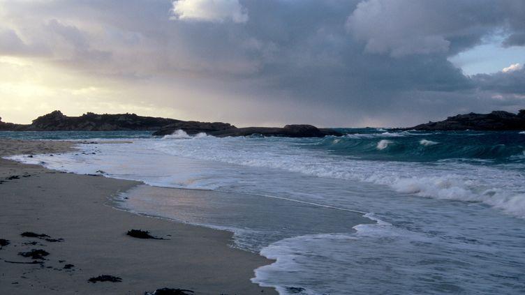 Une plage des Côtes-d'Armor, en Bretagne. (PHILIPPE BOUSSEAUD / BIOSPHOTO)