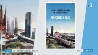 La couverture du livre de Philippe Pujol (France 3)