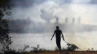 Un homme tente d'éteindre des flammes de l'incendie de Bormes-les-Mimosas (Var), le 26 juillet 2017. (ANNE-CHRISTINE POUJOULAT / AFP)