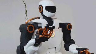 Pyrene, un robot humanoïde nouvelle génération, a été présenté jeudi 9 février par le CNRS et son laboratoire de recherche LAAS. (CNRS - capture d'écran)
