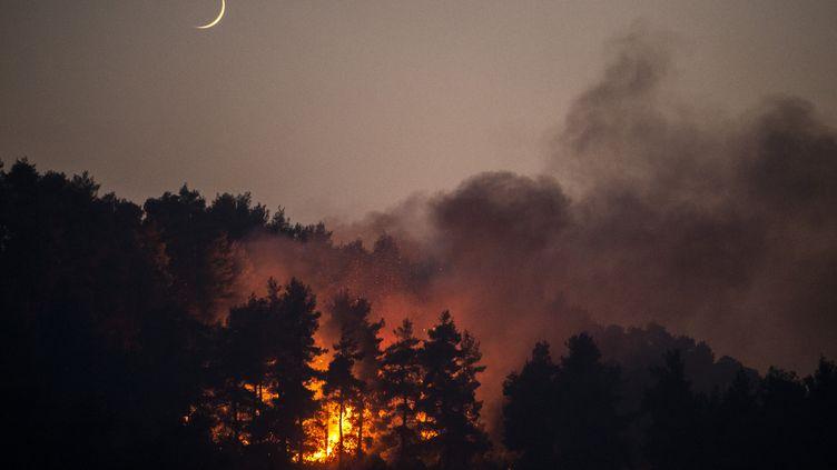 Un feu de forêt près du village de Gouves, sur l'île d'Eubée (Grèce), le 10 août 2021. (ANGELOS TZORTZINIS / AFP)
