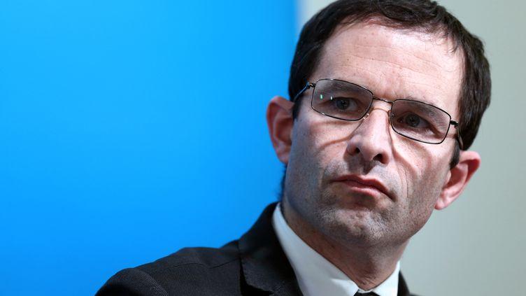 Le ministre de la Consommation, Benoît Hamon, le 21 février 2013 lors d'une conférence de presse au ministère de l'Agriculture (Paris). (THOMAS SAMSON / AFP)