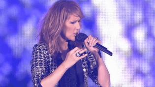 Concert de Céline Dion au stade Pierre-Mauroy à Villeneuve-d'Ascq  (France 3 / Culturebox / capture d'écran)