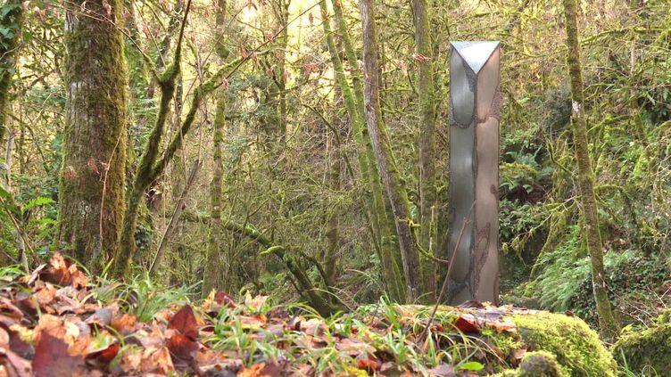 Un étrange monolithe a été découvert dans une forêt des Deux-Sèvres (France 3)