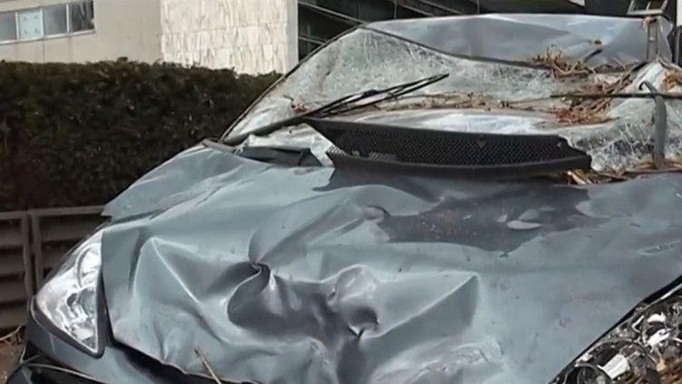 À Villeneuve-d'Ascq (Nord), un arbre est tombé sur une voiture, blessant deux personnes. (CAPTURE D'ÉCRAN FRANCE 3)