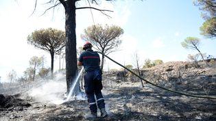 Un pompier lutte contre un incendie dans le massif des Maures, près de Cogolin (Var), le 17 août 2021. (SYLVAIN THOMAS / AFP)