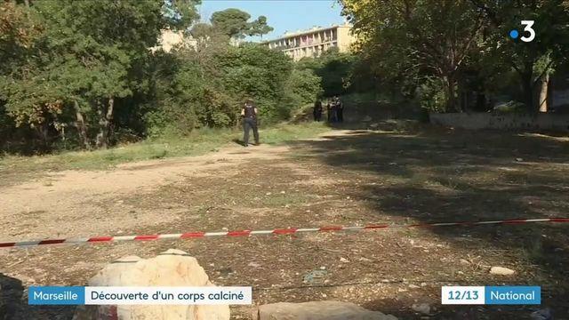 Marseille : le corps d'un jeune homme calciné retrouvé dans un parc