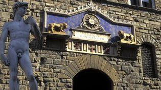 Le David de Michel-Ange à Florence (Italie)  (DANILE SCHNEIDER / PHOTONONSTOP)