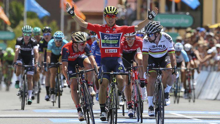 L'Australien Caleb Ewan victorieux sur le Tour Down Under (DE WAELE TIM / TDWSPORT SARL)