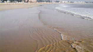 La plage d'Essaouira (ouest du Maroc) (AFP - ETHEL DAVIES / ROBERT HARDING HERITAGE)