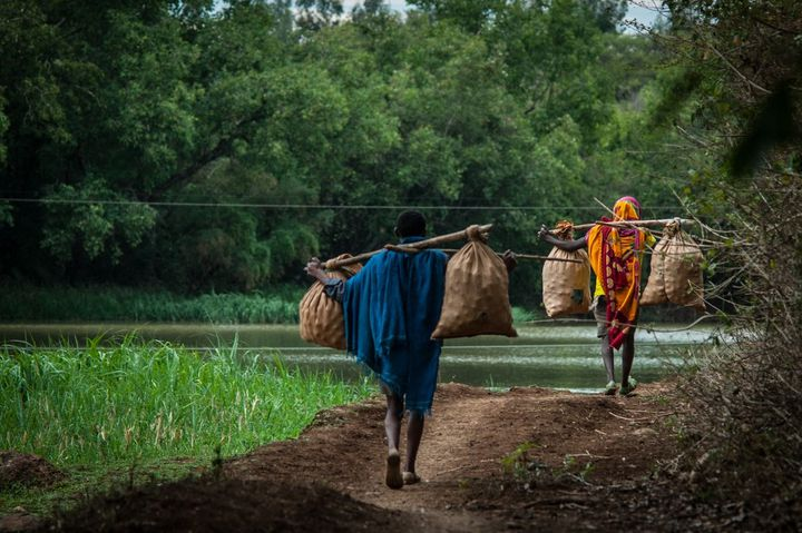 Près de Bahir Dar en Ethiopie, des hommes transportent des tomates pour les vendre au marché. (JONATHAN FONTAINE / HANS LUCAS)