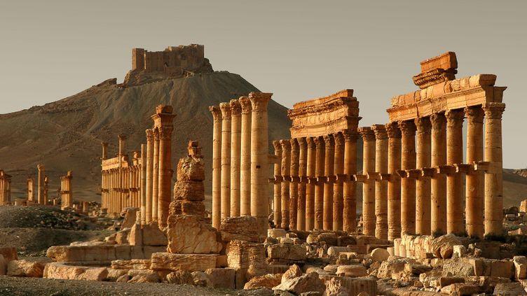 (Illustration : une photo de Palmyre datant d'octobre 2009 © Maxppp)