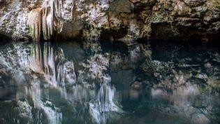 """Un """"cenote"""" de Santa Cruz, au Mexique, le 24 juillet 2021. (HUGO BORGES / AFP)"""