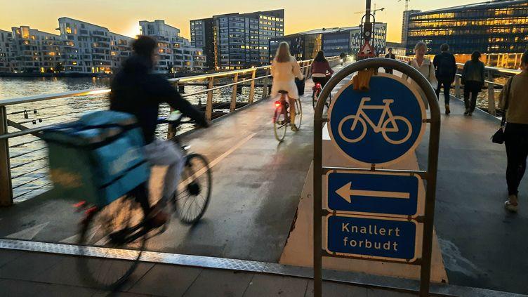 Une passerelle cyclable sur le pont du Serpent à Copenhague. (AGATHE MAHUET / RADIO FRANCE)