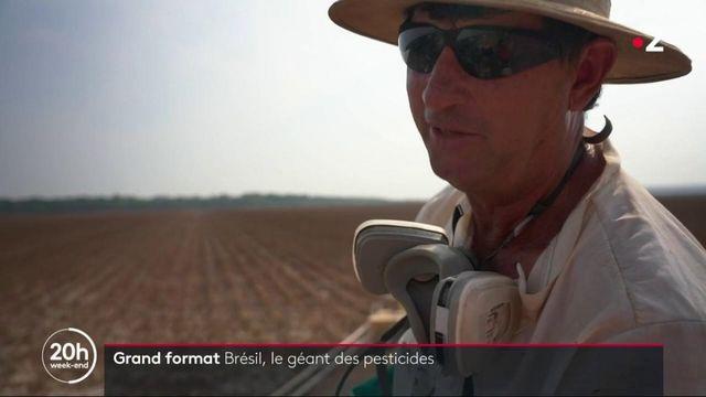 Bresil : le géant des pesticides