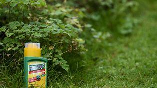 Ledésherbant Roundup, commercialisé par la firme américaine Monsanto, contient du glyphosate. (MAXPPP)