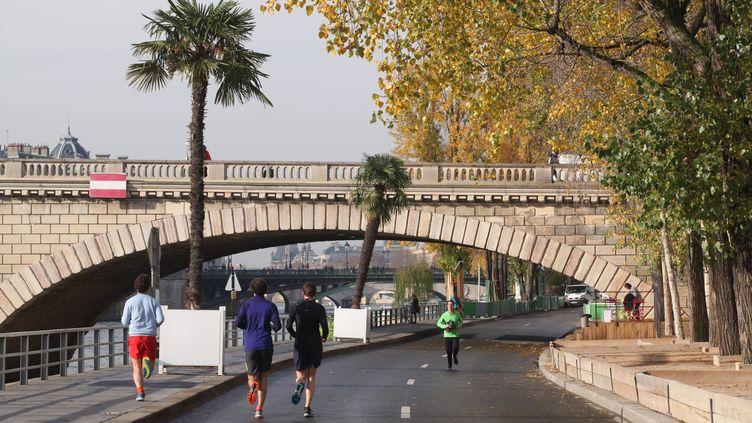 Une voie sur berge piétonnisée à Paris, le 23 novembre 2016. (MAXPPP)