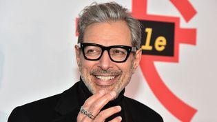 Jeff Goldblum à New York le 20 mars 2018  (Theo Wargo / Getty Images / AFP)
