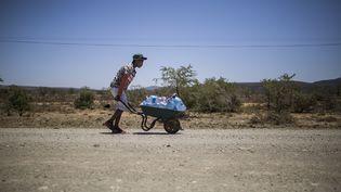 Un jeunehomme pousse une brouetteavec des bouteilles d'eau sur une route menant au township de Bezuidenhoutville près d'Adelaïde, dans l'est de l'Afrique du Sud. Photo prise le 28 novembre 2019. (GUILLEM SARTORIO / AFP)