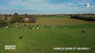 Envoyé spécial. Agriculteurs et heureux ! (ENVOYÉ SPÉCIAL  / FRANCE 2)