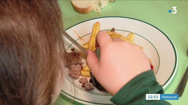 Lozère : des élus s'opposent au menu végétarien dans les cantines scolaires