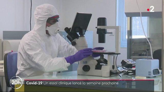 Covid-19 : la recherche d'un vaccin avance-t-elle ?