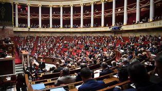 Les députés siègent à l'Assemblée nationale, à Paris, le 23 janvier 2019. (ERIC FEFERBERG / AFP)