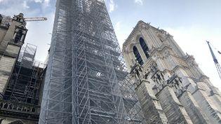 Le chantier de restauration de la cathédrale Notre-Dame à Paris, après l'incendie de 2019. (IMAGE POINT FR - LPN / BSIP)
