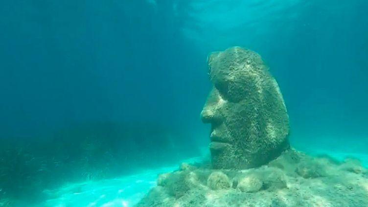 Cannes : un écomusée immergé à visiter en plongée sous-marine (France 3)