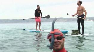 Marseille : dans les calanques, des passionnés s'adonnent à la plongée en plein mois de février (France 2)