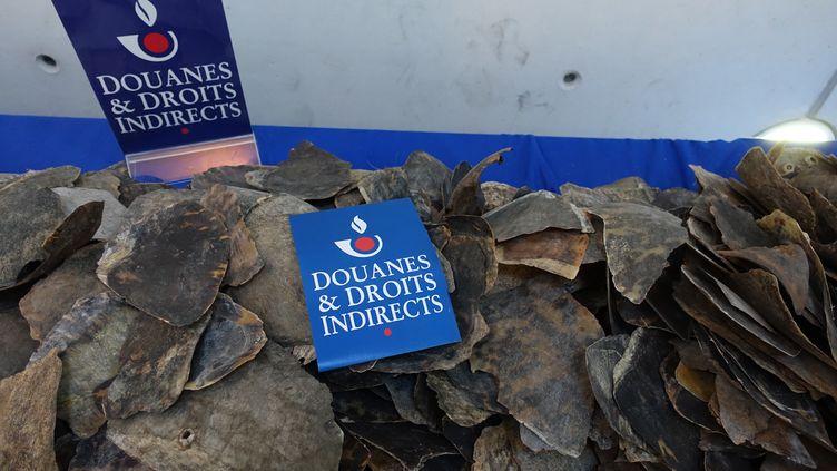 Une demi-tonne d'écailles de tortues ont été saisies à l'aéroport de Roissy, jeudidernier. (DOUANE FRANCAISE)