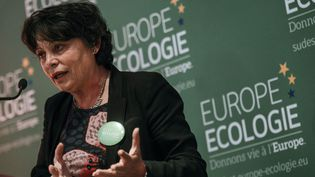 Michele Rivasi, eurodéputée EELV, durant un meeting, le 14 mai 2014 à Lyon. (JEFF PACHOUD / AFP)