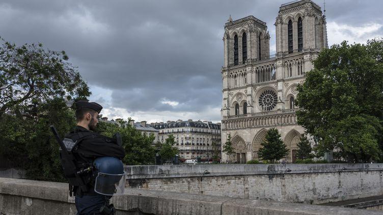 Un policier patrouille près de la cathédrale Notre-Dame de Paris, le 6 juin 2017. (SAMUEL BOIVIN / CITIZENSIDE / AFP)