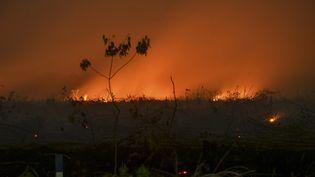 Des incendies en Indonésie, le 9 septembre 2019. (WAHYUDI / AFP)