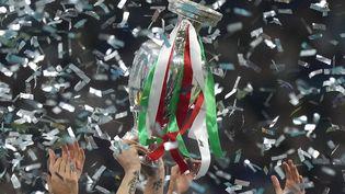 L'Ecosse peut souffler, c'est bien l'Italie qui a décroché le trophée Henri Delaunay, dimanche, après leur victoire face à l'Angleterre. (FRANK AUGSTEIN / POOL / AFP)
