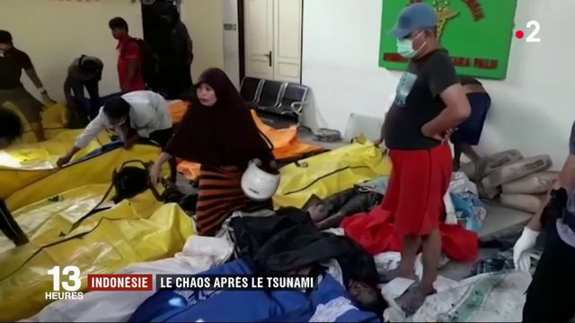 Tsunami en Indonésie : le chaos après la catastrophe
