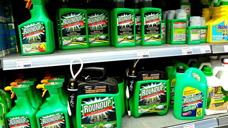 """L'herbicideglyphosate est commercialisé par le géant de l'agroalimentaire Monsanto sous la marque """"Roundup"""" (SEBASTIEN JARRY / MAXPPP)"""
