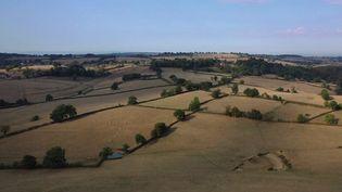En Bourgogne, le monde agricole tente de s'adapter au dérèglement climatique. C'est le cas àHauteville-lès-Dijon (Côte-d'Or). (CAPTURE ECRAN FRANCE 3)
