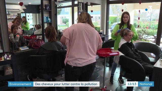 Environnement : une collecte de cheveux pour lutter contre la pollution
