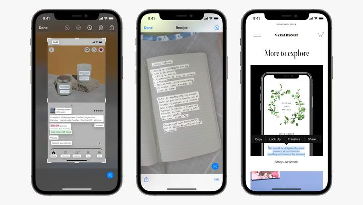 Un aperçu des fonctionnalités du Live Text fonctionnant à la fois dans l'appareil photo, dans des captures d'écran et dans des photos. (APPLE)