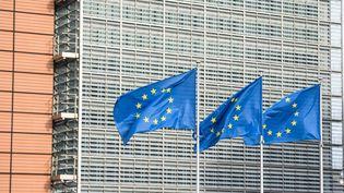 Les pays européens préparent la mise en oeuvre du plan de relance européen. Une mise en oeuvre semée d'embûches. (JEAN-LUC FL?MAL / MAXPPP)
