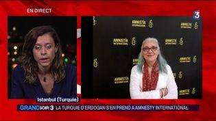 Idil Eser, directrice d'Amnesty International Turquie, a été arrêtée (France 3)