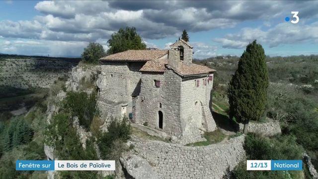 Ardèche : la vie d'un ermite au cœur du bois de Païolive