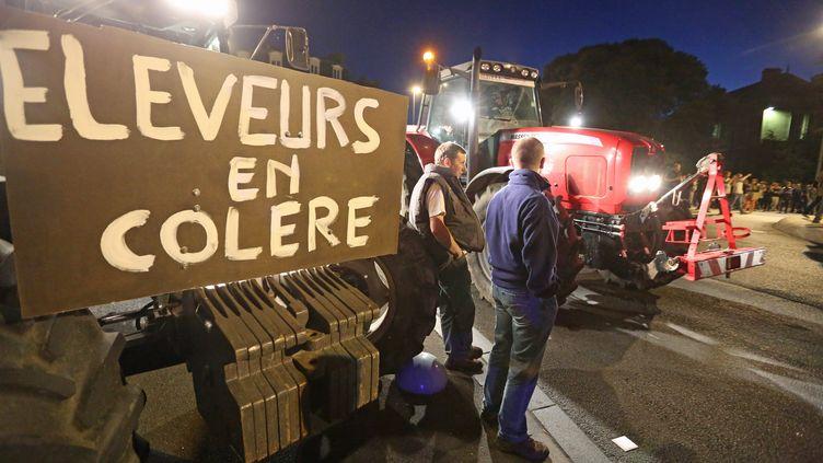 Manifestation d'agriculteurs à l'appel de la FNSEA, le 15 juillet 2015 à Saint-Brieuc (Côtes-d'Armor). (  MAXPPP)