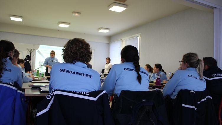 Dix-neufs gendarmes suivent une formationsur l'accueil et la prise en charge des victimes de violencesintrafamiliales, à Orléans (Loiret), le 12 décembre 2019. (GUILLEMETTE JEANNOT / FRANCEINFO)