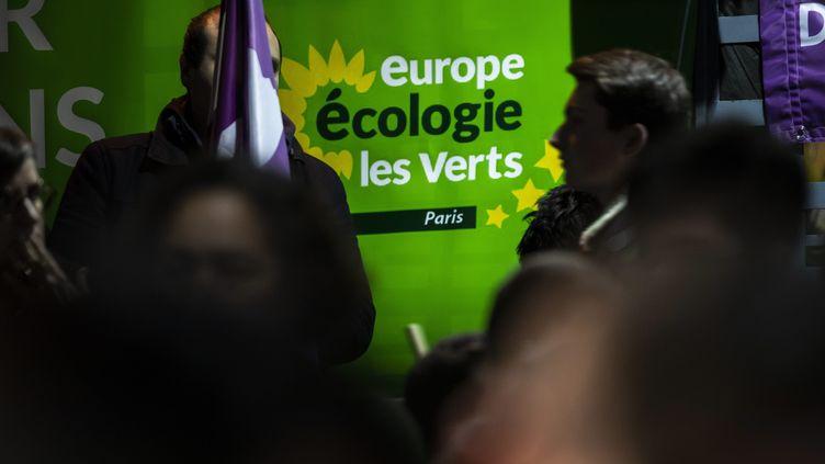 Lors de la campagne d'Europe Ecologie-Les Verts pour les municipales à Paris, le 5 février 2020. Photo d'illustration. (ALEXIS SCIARD / MAXPPP)